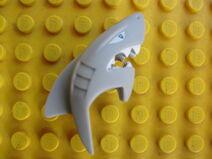 Shark Warrior Head