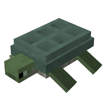 File:Turtle3.png
