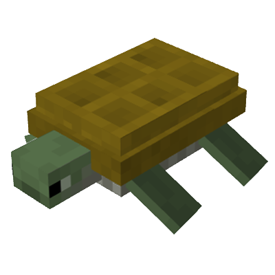 File:Turtle1.png