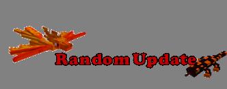 RandomUpdate