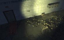 AT Semyonovskaya station Pile of bones