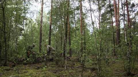 Doku Tschernobyl - Die Natur kehrt zurück HD