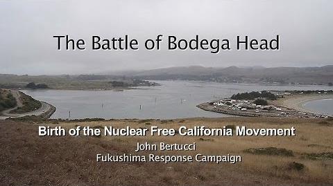 Bodega Bay (USA)