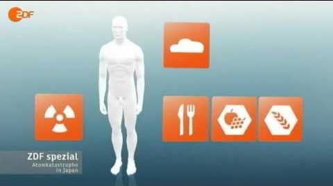 5 Wie Radioaktivität den Mensch schädigt Katastrophenschutz 2 29 Min