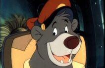 Baloo von Bruinwald XIII