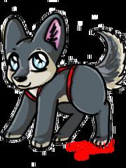 Huskydog1fixed