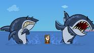 Mary e gli squali
