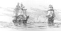 HMSLeopard