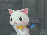 Mischievous Kitty