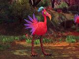 Colorful Birdbrain
