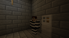 Wiki vankila