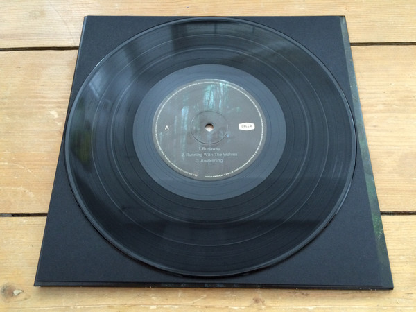 File:Vinyl1.jpg
