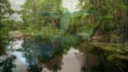 Everglades & Ally-Gators (184)