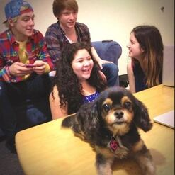 Ross, Calum, Laura, Raini, and Pixie
