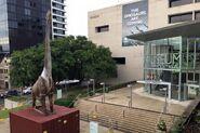 Qld Museum Brisbane