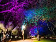 Darwin Civic Park