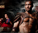 Spartacus: Blood and Sand/Gallery