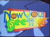 Nowyouseeit1998pic1