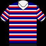 1916 NSWRFL season | Australian Rugby League Wiki | Fandom
