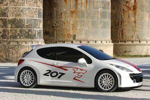 Peugeot-207-rcup-2b