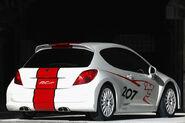 Peugeot-207-rcup-3b