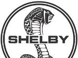 Carroll Shelby International