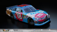 18-KYLE-BUSCH-NASCAR-UNITES
