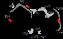 Silverstone Circuit 2010 version