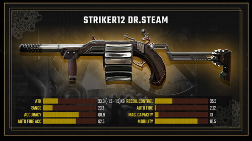 Striker12 DrSteam