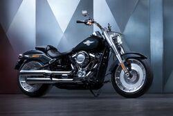 Leo's Harley