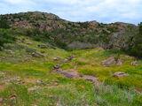 Araena Fields