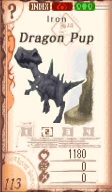 DragonPup