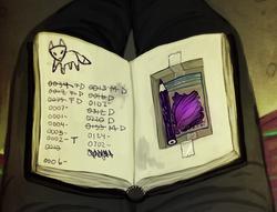 Odins book