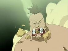 Hippo mâchant des pierres
