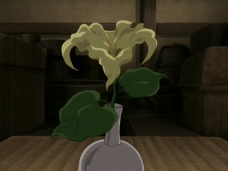 File:Moon flower.png