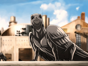 Cuervo lagarto
