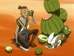 2х11 Сокка Момо и кактус