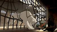 Naga y Pabu liberan a Asami, Iroh y Bolin