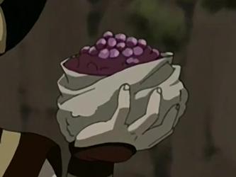 File:Purple berries.png