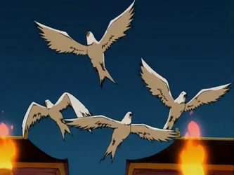 Archivo:Doves.png