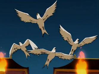 File:Doves.png