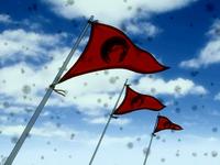 Southern Raiders flag
