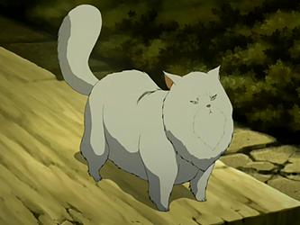 Miyuki | Avatar Wiki | FANDOM powered by Wikia