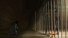 К1х11 Тарлок в клетке