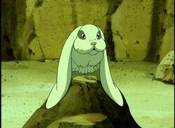 1х05 Кролик