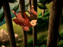 Ty Lee entre árvores