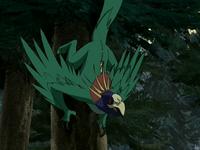 Flying iguana parrot