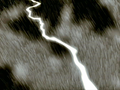 Thumbnail for version as of 06:18, January 30, 2011