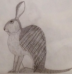 File:Armadillo Hare B&W Sketch.png