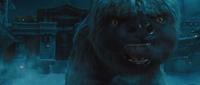 Film - Appa roars